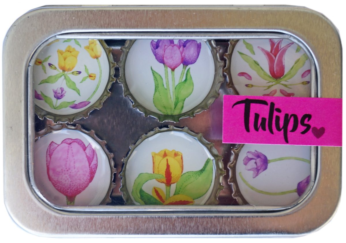 Tulips Magnet - Six Pack